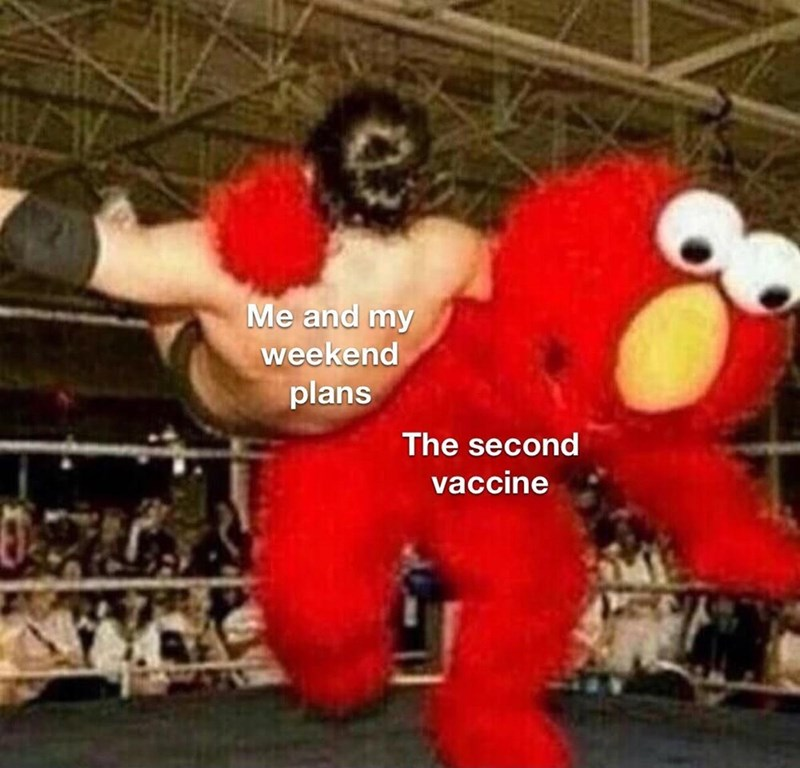 Mammal - Me and my weekend plans The second vaccine