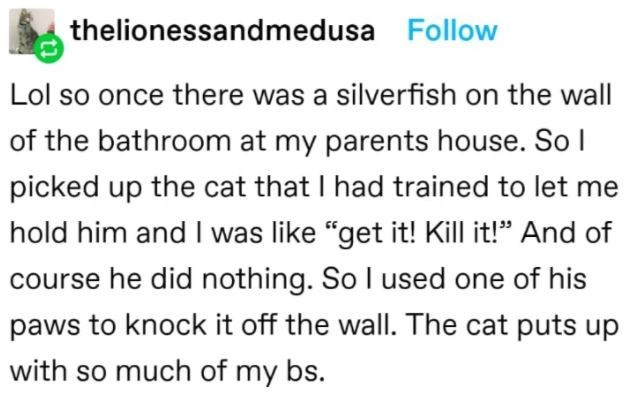 """Font - thelionessandmedusa Follow Lol so once there was a silverfish on the wall of the bathroom at my parents house. So I picked up the cat that I had trained to let me hold him and I was like """"get it! Kill it!"""" And of course he did nothing. So I used one of his paws to knock it off the wall. The cat puts up with so much of my bs."""