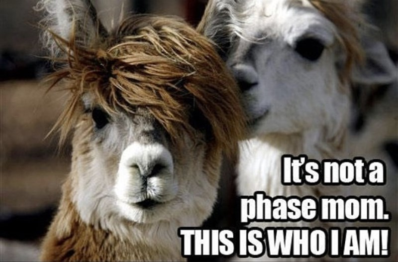 Nature - It's not a phase mom. THIS IS WHO I AM!
