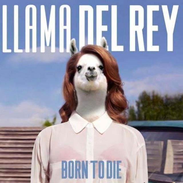 Forehead - LLAMA,DEL REY BORN TO DIE