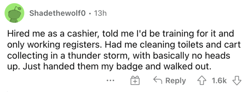Rectangle - Shadethewolf0 • 13h Hired me as a cashier, told me l'd be training for it and only working registers. Had me cleaning toilets and cart collecting in a thunder storm, with basically no heads up. Just handed them my badge and walked out. G Reply 4 1.6k 3 ...