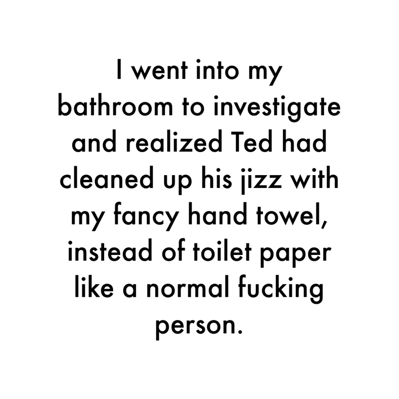 Font - I went into my bathroom to investigate and realized Ted had cleaned up his jizz with my fancy hand towel, instead of toilet paper like a normal fucking person.