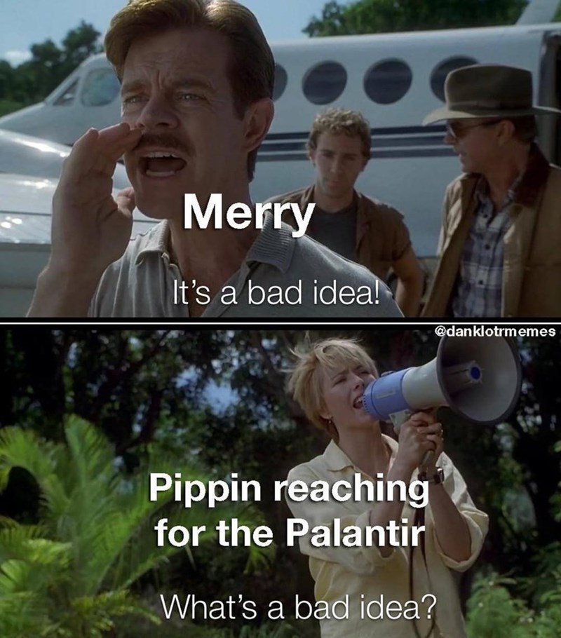 Head - Merry It's a bad idea! @danklotrmemes Pippin reaching for the Palantir What's a bad idea?
