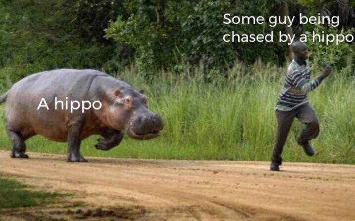 Plant - Some guy being chased by a hippo A hippo