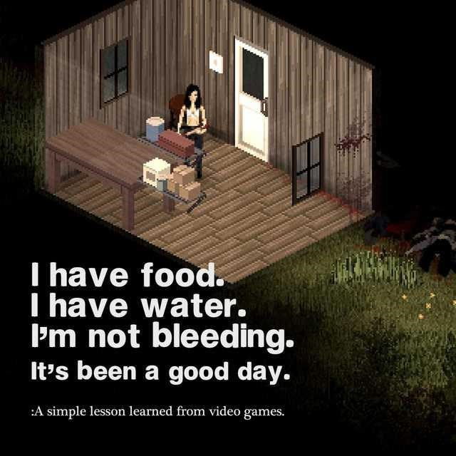 Property - I have food. I have water. P'm not bleeding. It's been a good day. :A simple lesson learned from video games.