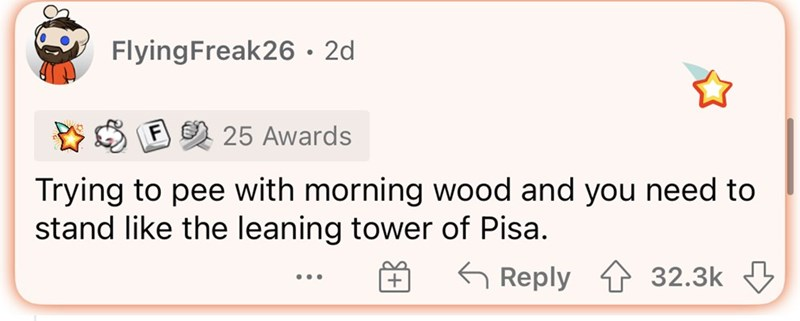 Rectangle - FlyingFreak26 • 2d F 25 Awards Trying to pee with morning wood and you need to stand like the leaning tower of Pisa. G Reply 4 32.3k ...