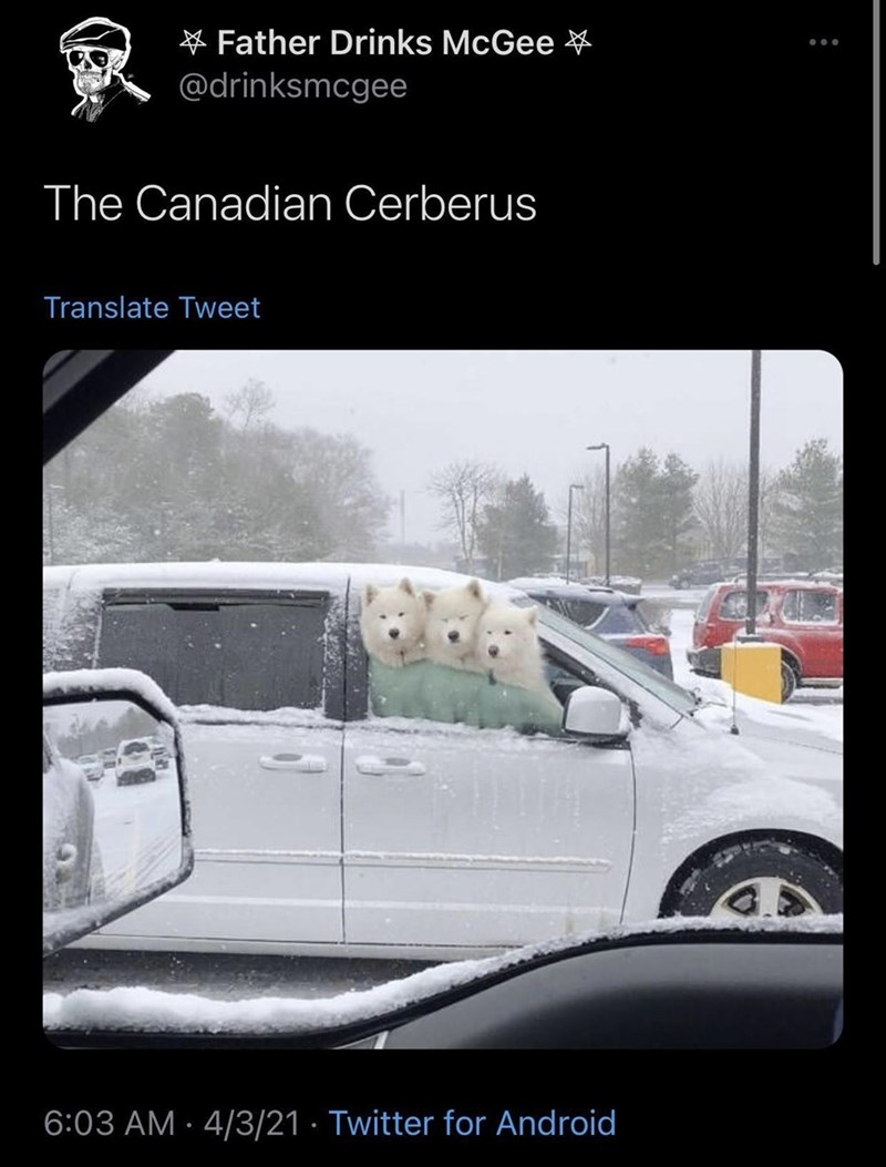 Automotive parking light - * Father Drinks McGee ¥ @drinksmcgee The Canadian Cerberus Translate Tweet 6:03 AM · 4/3/21 · Twitter for Android