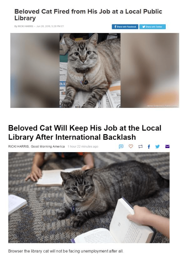 Cat - Beloved Cat Fired from His Job at a Local Public Library f Shere with Facebook By RICKI HARRIS - Jun 28, 2016, 528 PMET She with Twmer ar an Beloved Cat Will Keep His Job at the Local Library After International Backlash RICKI HARRIS, Good Morning America 1 hour 22 minutes ago Browser the library cat will not be facing unemployment after all