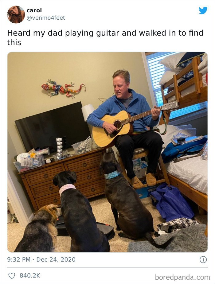Musical instrument - carol @venmo4feet Heard my dad playing guitar and walked in to find this THON 48 9:32 PM · Dec 24, 2020 840.2K boredpanda.com