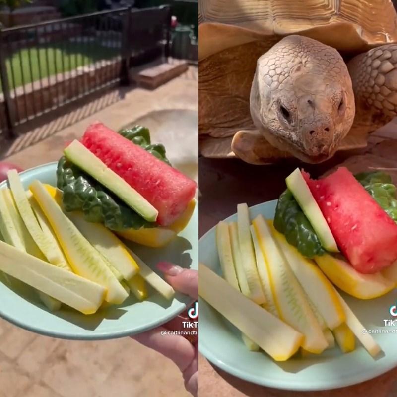 Food - TikT @ caitlinandtir Tik @ caitlinandt