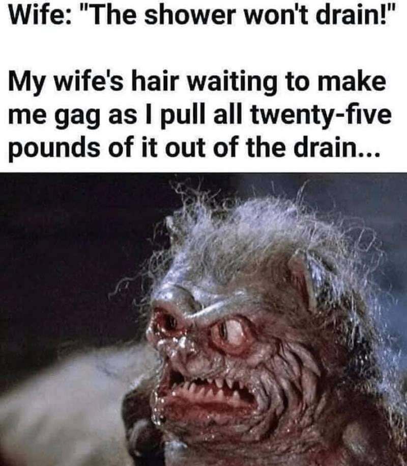 """Jaw - Wife: """"The shower won't drain!"""" My wife's hair waiting to make me gag as I pull all twenty-five pounds of it out of the drain..."""