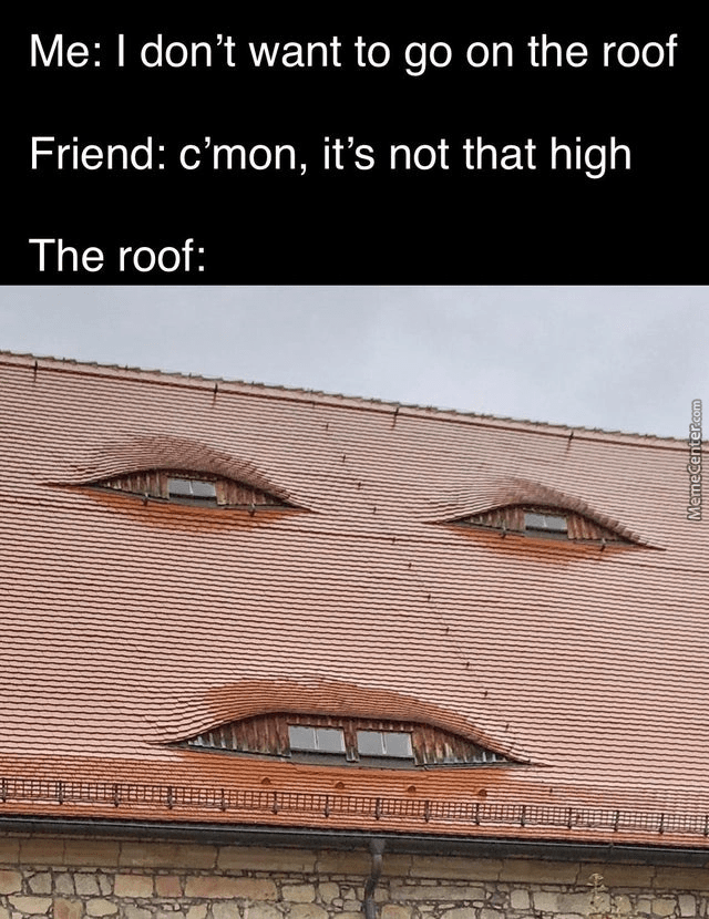 Building - Me: I don't want to go on the roof Friend: c'mon, it's not that high The roof: MemeCenter.com