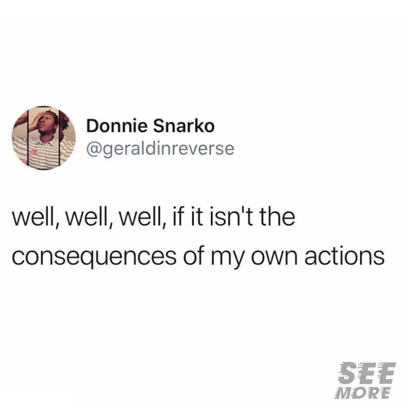 Font - Donnie Snarko @geraldinreverse well, well, well, if it isn't the consequences of my own actions SEE MORE