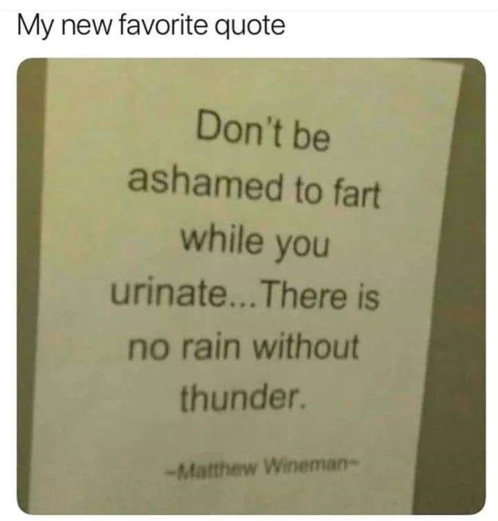 Rectangle - My new favorite quote Don't be ashamed to fart while you urinate..There is no rain without thunder. -Matthew Wineman-