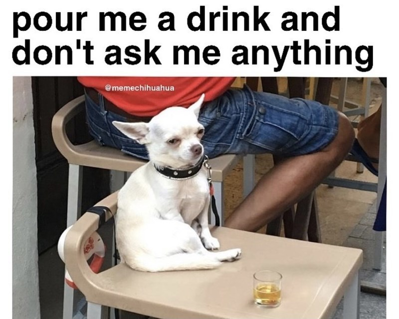 Table - pour me a drink and don't ask me anything @memechihuahua