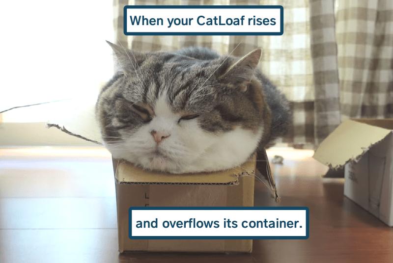cat memes - 9611034112