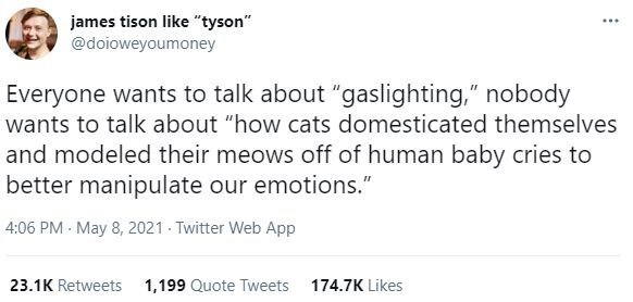 """Font - james tison like """"tyson"""" @doioweyoumoney ... Everyone wants to talk about """"gaslighting,"""" nobody wants to talk about """"how cats domesticated themselves and modeled their meows off of human baby cries to better manipulate our emotions."""" 4:06 PM - May 8, 2021 - Twitter Web App 23.1K Retweets 1,199 Quote Tweets 174.7K Likes"""