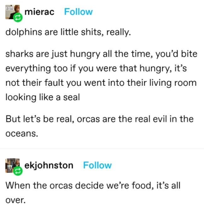Font - mierac Follow dolphins are little shits, really. sharks are just hungry all the time, you'd bite everything too if you were that hungry, it's not their fault you went into their living room looking like a seal But let's be real, orcas are the real evil in the осeans. ekjohnston Follow When the orcas decide we're food, it's all over.