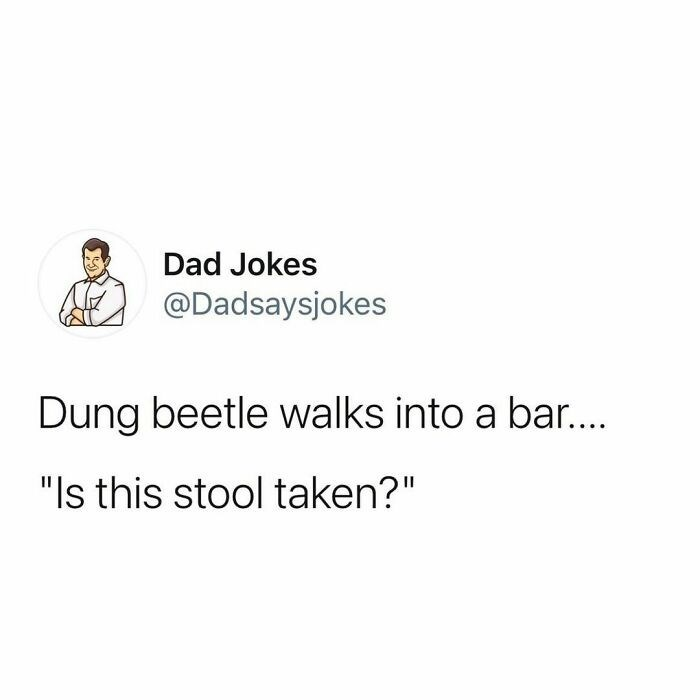 "Font - Dad Jokes @Dadsaysjokes Dung beetle walks into a bar.. ""Is this stool taken?"""