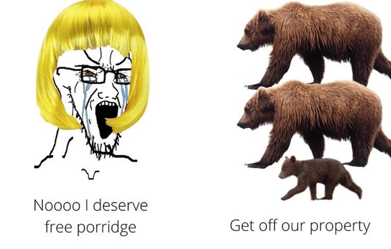 Brown bear - Noo0o I deserve free porridge Get off our property