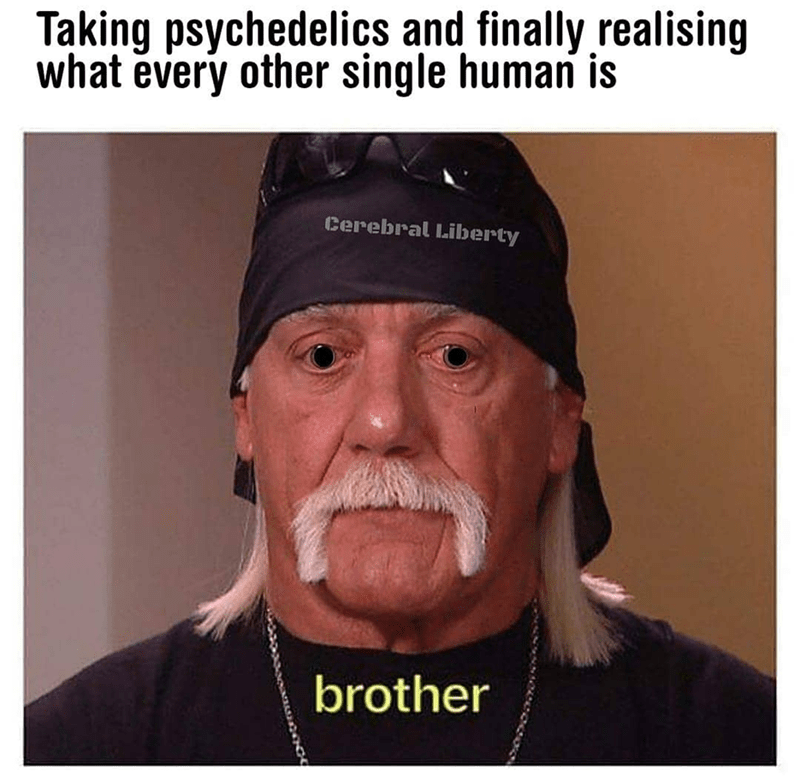Forehead - Taking psychedelics and finally realising what every other single human is Cerebral Liberty brother