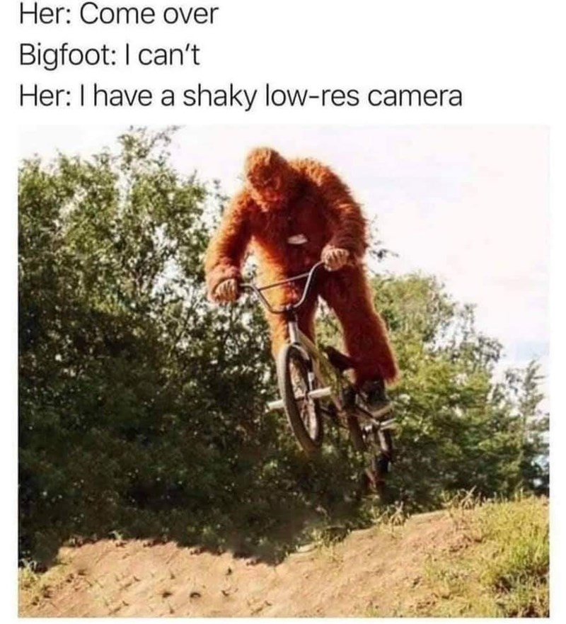 Primate - Her: Come over Bigfoot: I can't Her:I have a shaky low-res camera