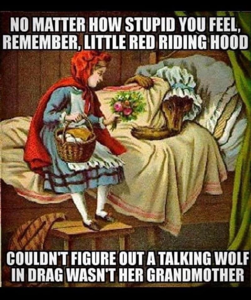 Plant - NO MATTER HOW STUPID YOU FEEL, REMEMBER, LITTLE RED RIDING HOOD COULDN'T FIGURE OUT A TALKING WOLF IN DRAG WASN'T HER GRANDMOTHER
