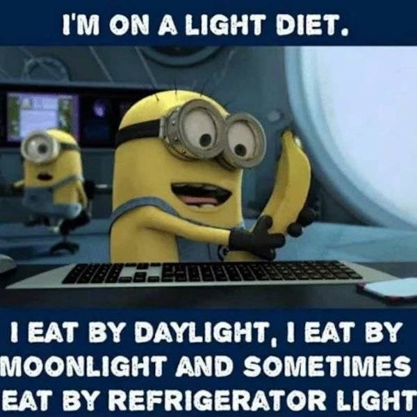 Cartoon - I'M ON A LIGHT DIET. I EAT BY DAYLIGHT, I EAT BY MOONLIGHT AND SOMETIMES EAT BY REFRIGERATOR LIGHT
