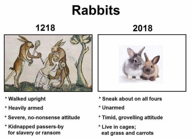 Vertebrate - Rabbits 1218 2018 * Sneak about on all fours * Unarmed * Walked upright * Heavily armed * Timid, grovelling attitude * Live in cages; eat grass and carrots Severe, no-nonsense attitude * Kidnapped passers-by for slavery or ransom