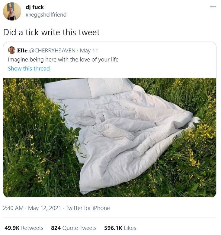 Plant - dj fuck @eggshellfriend Did a tick write this tweet Elle @CHERRYH3AVEN · May 11 Imagine being here with the love of your life Show this thread 2:40 AM May 12, 2021 · Twitter for iPhone 49.9K Retweets 824 Quote Tweets 596.1K Likes