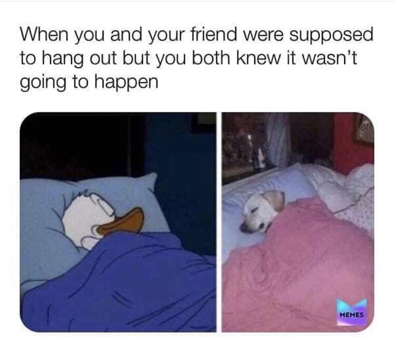 Comfort - When you and your friend were supposed to hang out but you both knew it wasn't going to happen MEMES