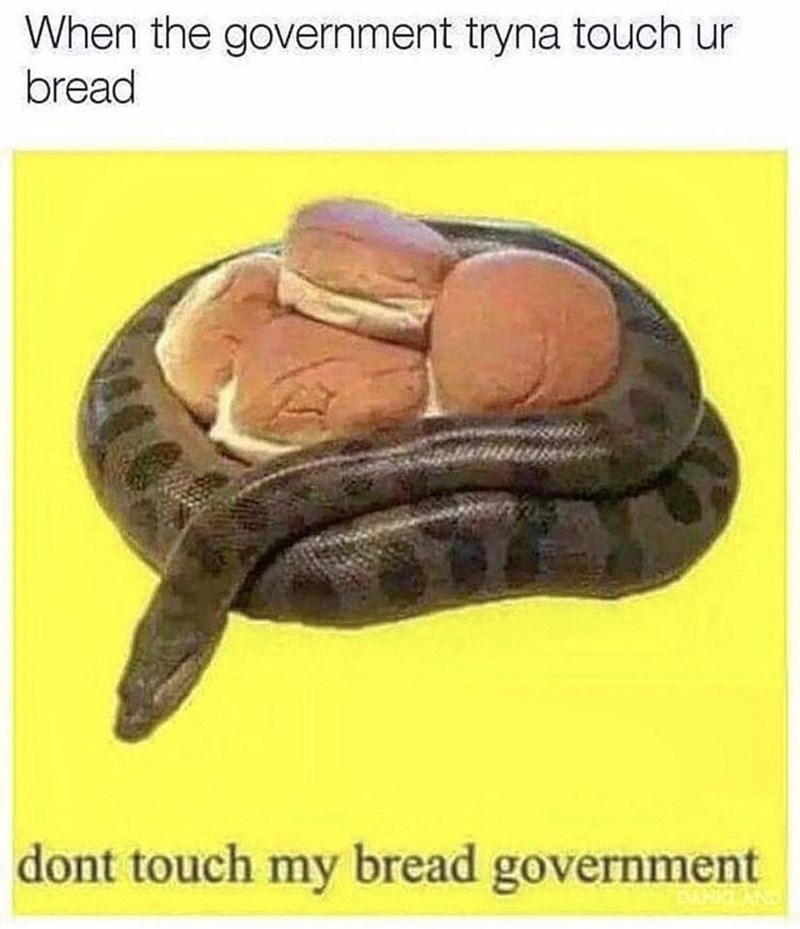 Jaw - When the government tryna touch ur bread dont touch my bread government