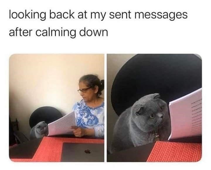 Vertebrate - looking back at my sent messages after calming down