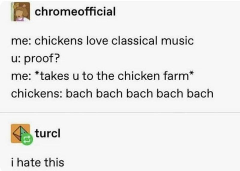 Rectangle - chromeofficial me: chickens love classical music u: proof? me: *takes u to the chicken farm* chickens: bach bach bach bach bach turcl i hate this