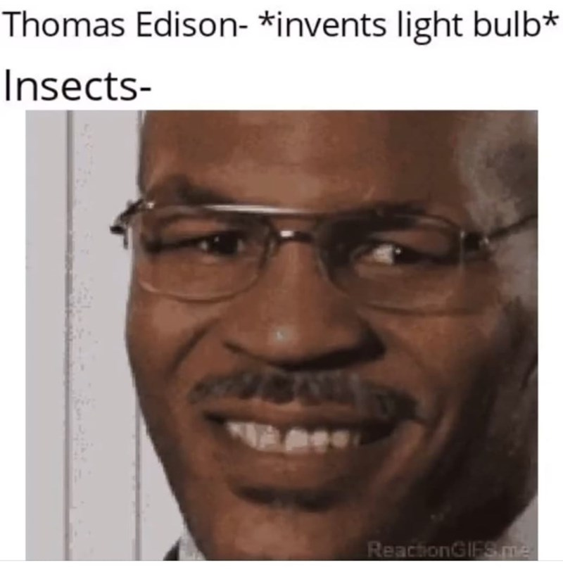 Forehead - Thomas Edison- *invents light bulb* Insects- ReactionGIFS me