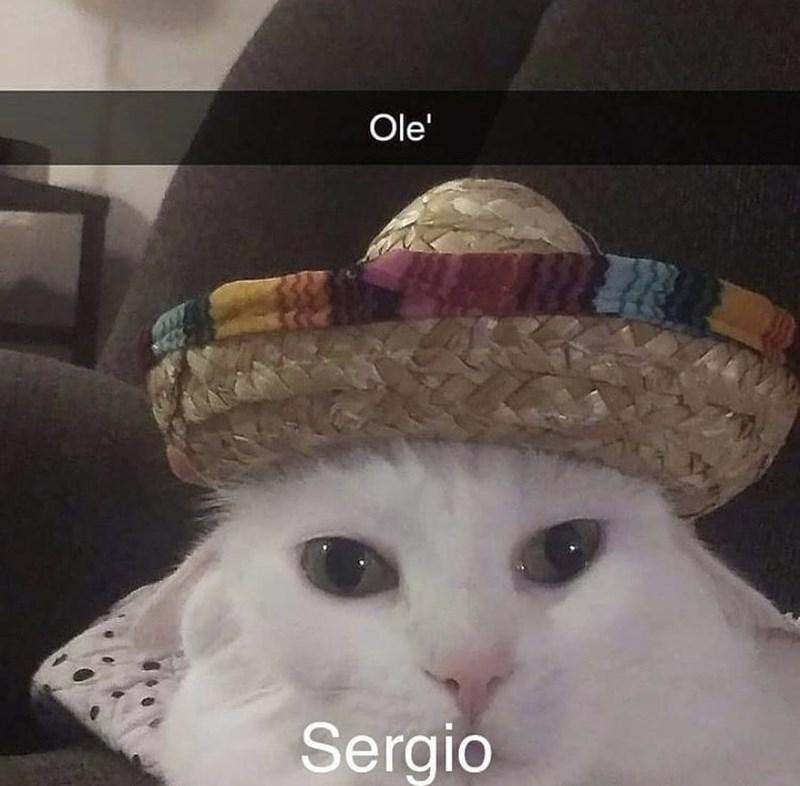 Hat - Ole' Sergio