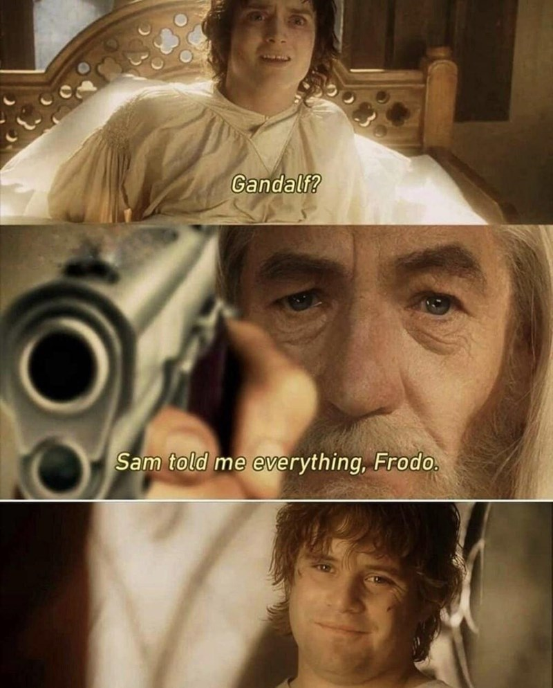 Face - Gandalf? Sam told me everything, Frodo.