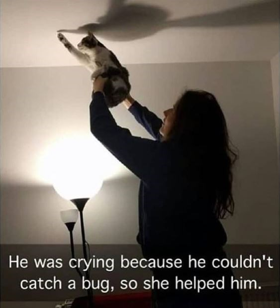 Hand - He was crying because he couldn't catch a bug, so she helped him.