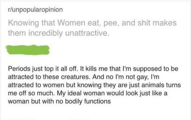 Rectangle - r/unpopularopinion Knowing that Women eat, pee, and shit makes them incredibly unattractive. Periods just top it all off. It kills me that I'm supposed to be attracted to these creatures. And no l'm not gay, I'm attracted to women but knowing they are just animals turns me off so much. My ideal woman would look just like a woman but with no bodily functions