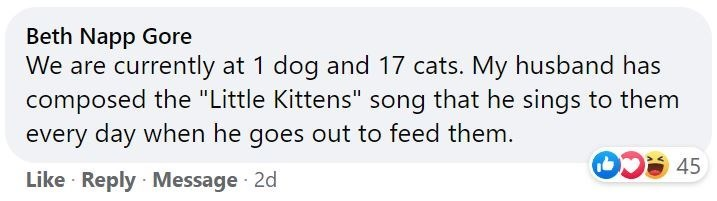 """Vertebrate - Beth Napp Gore We are currently at 1 dog and 17 cats. My husband has composed the """"Little Kittens"""" song that he sings every day when he goes out to feed them. to them 45 Like · Reply · Message 2d"""