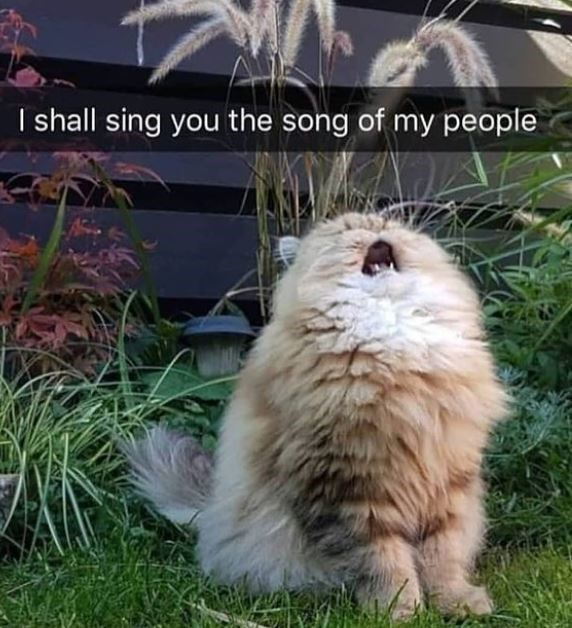 Plant - I shall sing you the song of my people