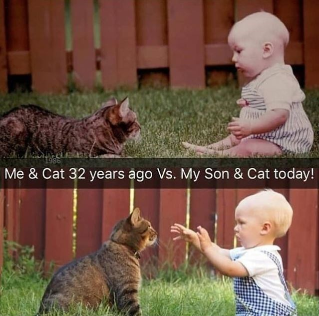 Face - 1986 Me & Cat 32 years ago Vs. My Son & Cat today!