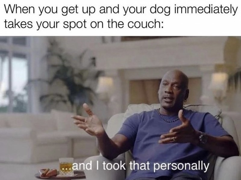 Hand - When you get up and your dog immediately takes your spot on the couch: and I took that personally