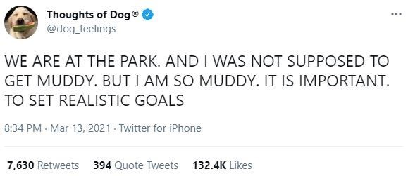 Product - Thoughts of Dog® @dog_feelings ... WE ARE AT THE PARK. AND I WAS NOT SUPPOSED TO GET MUDDY. BUT I AM SO MUDDY. IT IS IMPORTANT. TO SET REALISTIC GOALS 8:34 PM Mar 13, 2021 Twitter for iPhone 7,630 Retweets 394 Quote Tweets 132.4K Likes