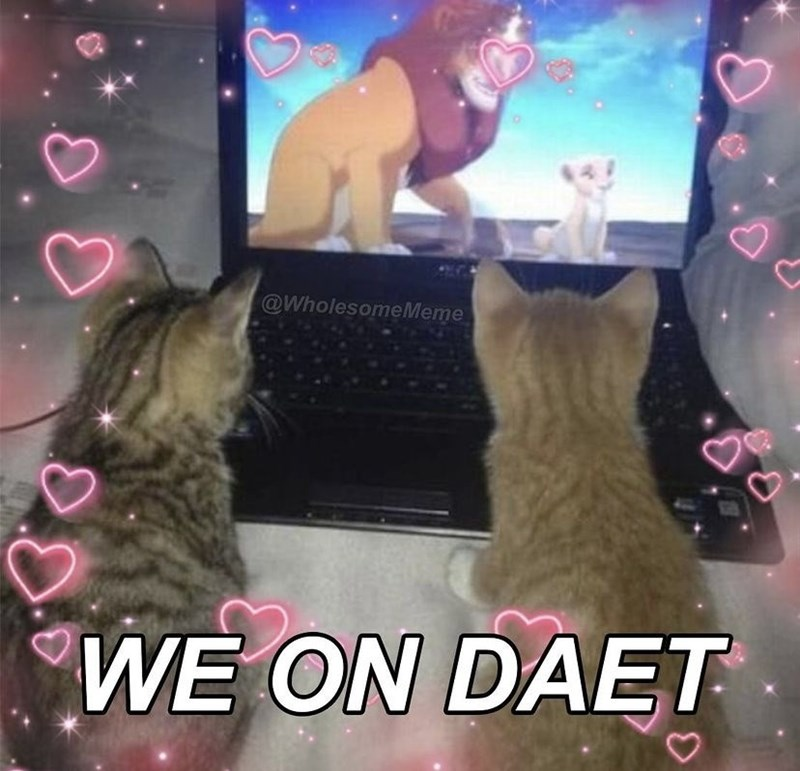 Photograph - @WholesomeMeme WE ON DAET