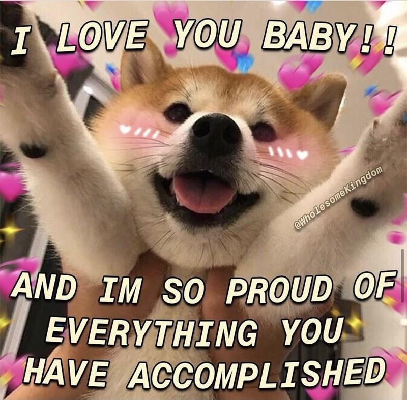 Dog - I LOVE YOU BABY!! 1110 eWholesomeKingdom AND IM SO PROUD OF EVERYTHING YOU HAVE ACCOMPLISHED