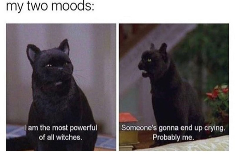 Cat - my two moods: I am the most powerful Someone's gonna end up crying. of all witches. Probably me.