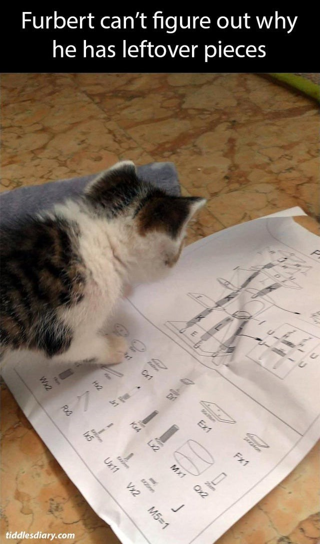 Cat - Furbert can't figure out why he has leftover pieces Dr Ex1 Fx1 KYA tiddlesdiary.com Lx2 Mx1 Wx2 RS Ux11 Vx2 M5 1