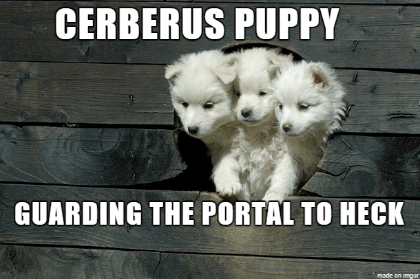 Dog - CERBERUS PUPPY GUARDING THE PORTAL TO HECK made on imgur
