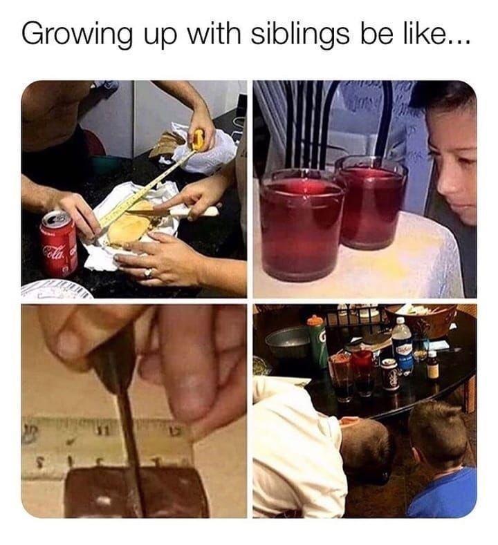 Tableware - Growing up with siblings be like...